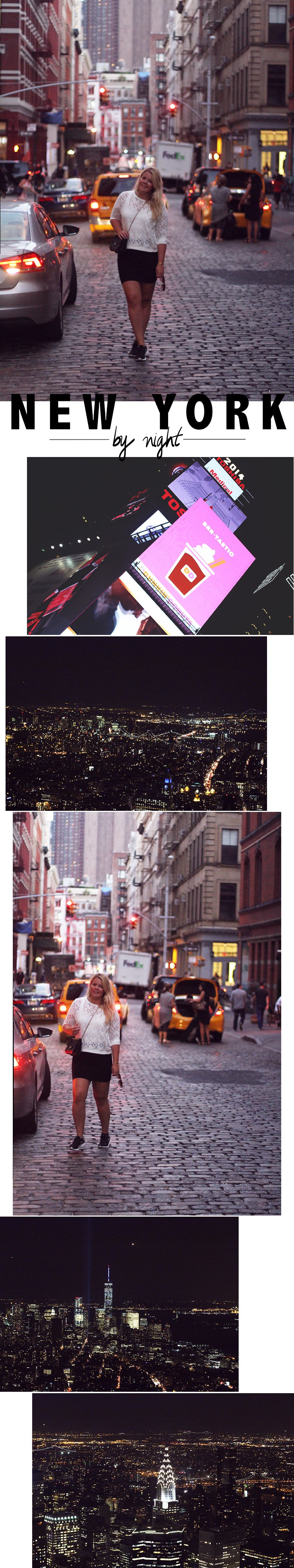 NEW YORK CITY <i>by night</i>