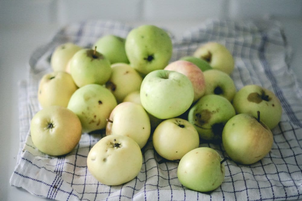 Opskrift pa? gammeldags æblegrød (1 of 7)
