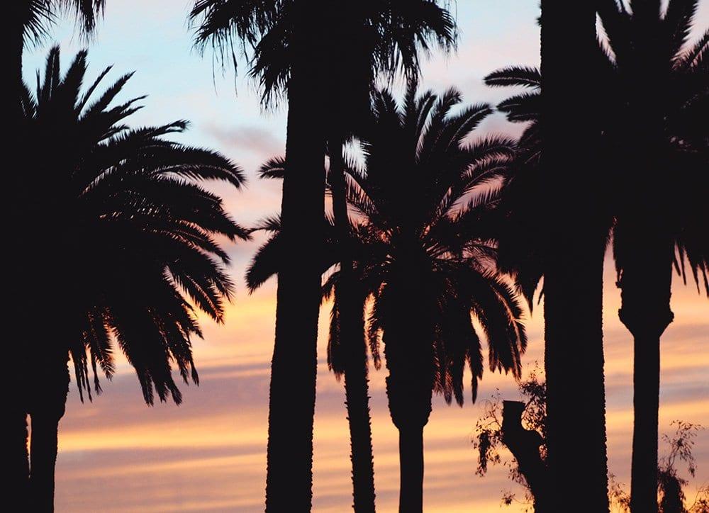 Venice-Beach-Los-Angeles-solnedgang-1