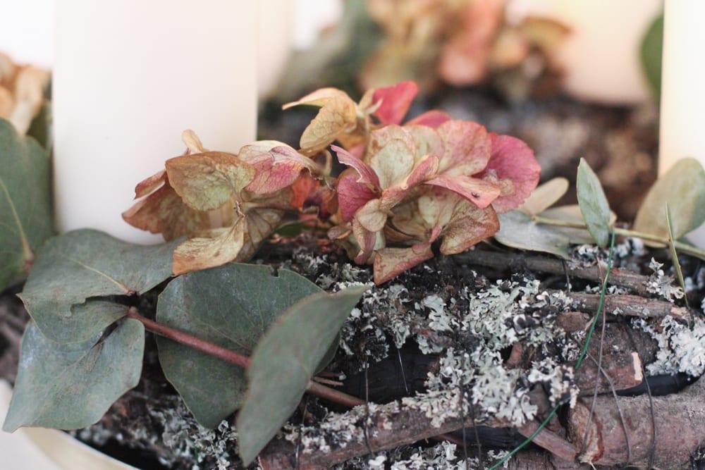 adventskrans-diy-eucalyptus-28-of-37