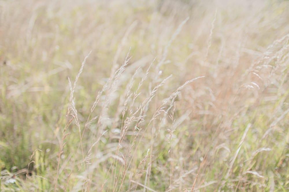sommerhus-lykke-acie-blog-8-of-13